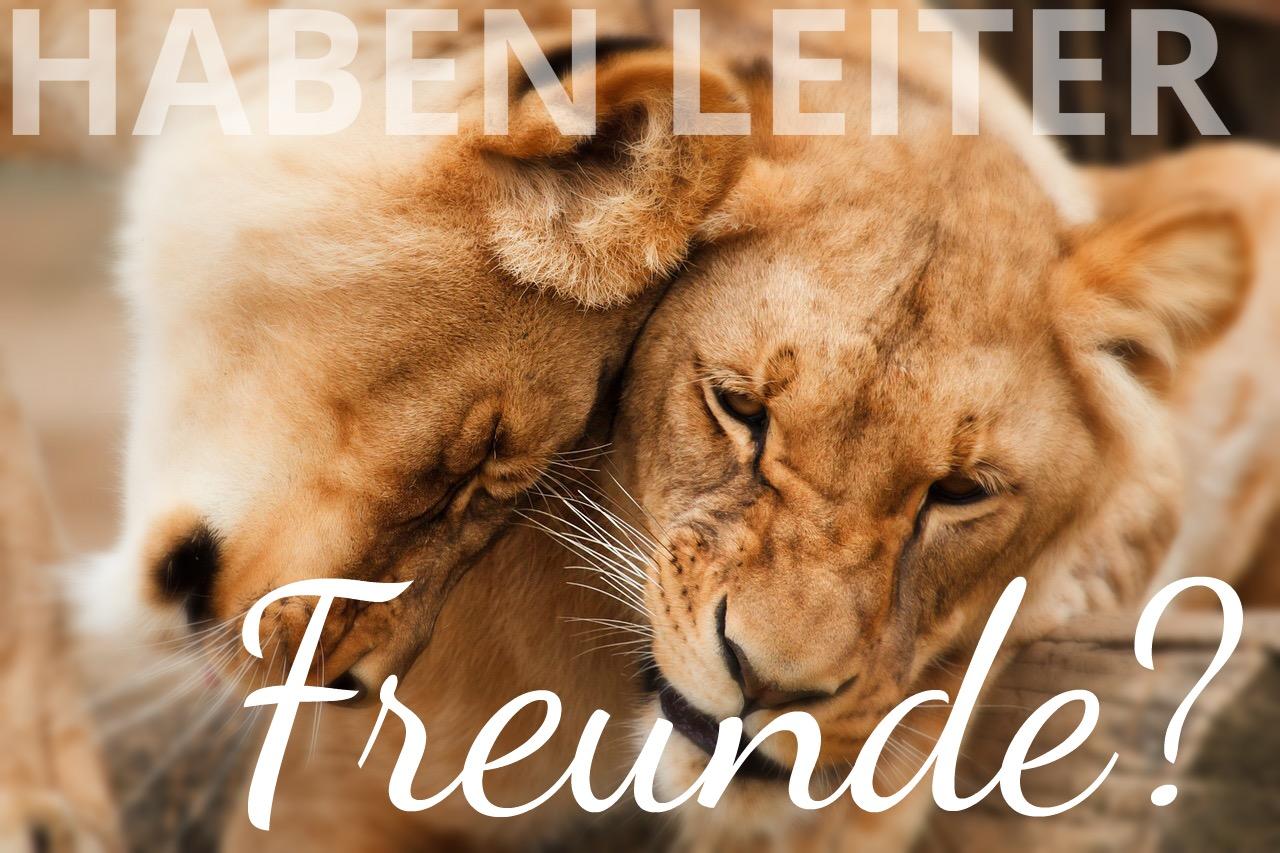 richtige freunde finden
